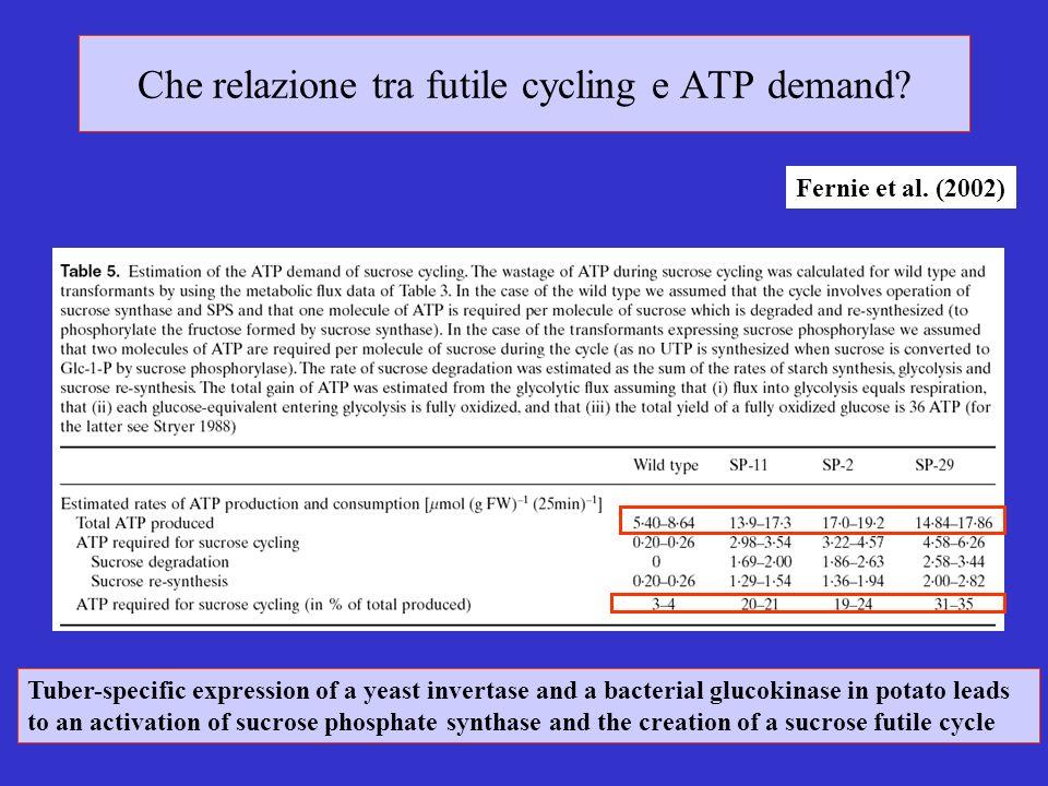 Che relazione tra futile cycling e ATP demand