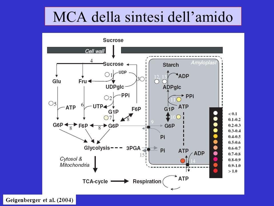 MCA della sintesi dell'amido