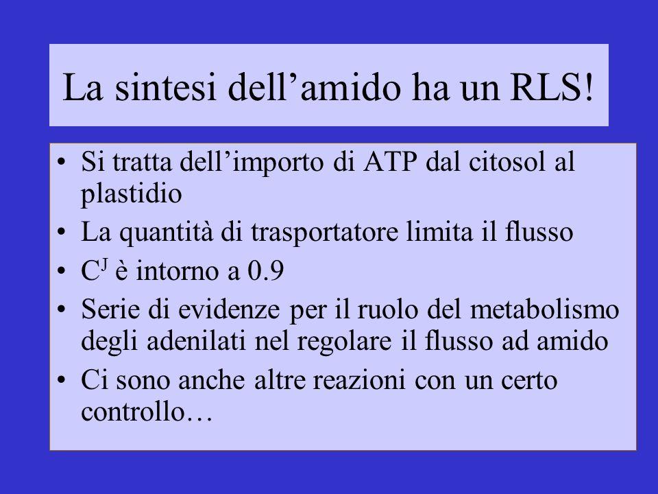 La sintesi dell'amido ha un RLS!