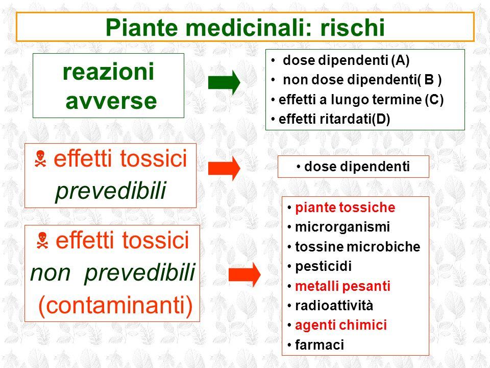 Piante medicinali: rischi
