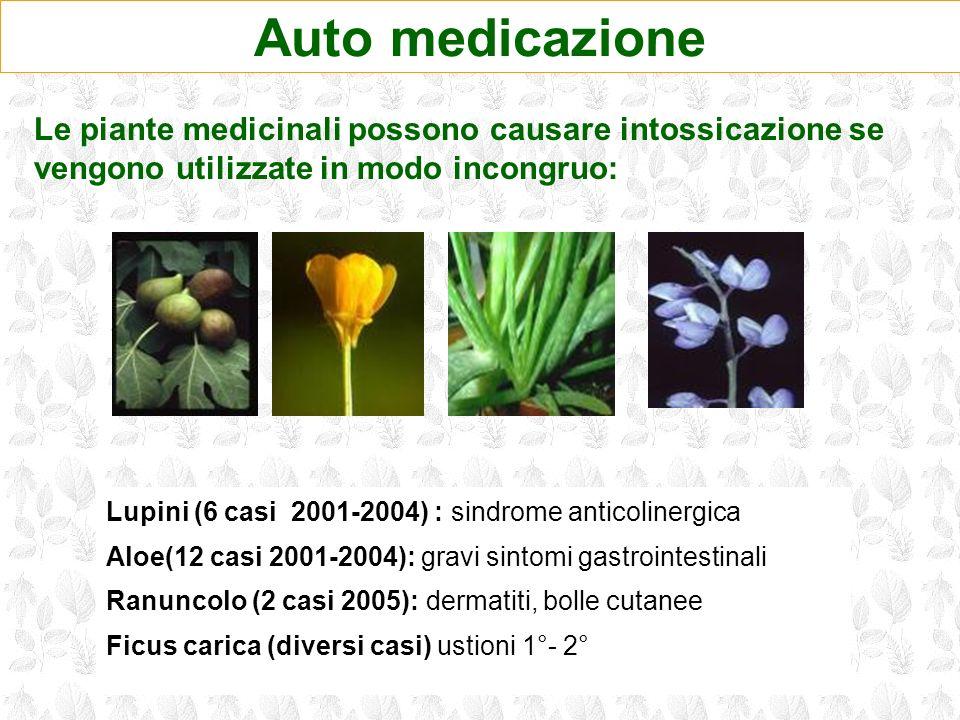 Auto medicazione Le piante medicinali possono causare intossicazione se vengono utilizzate in modo incongruo: