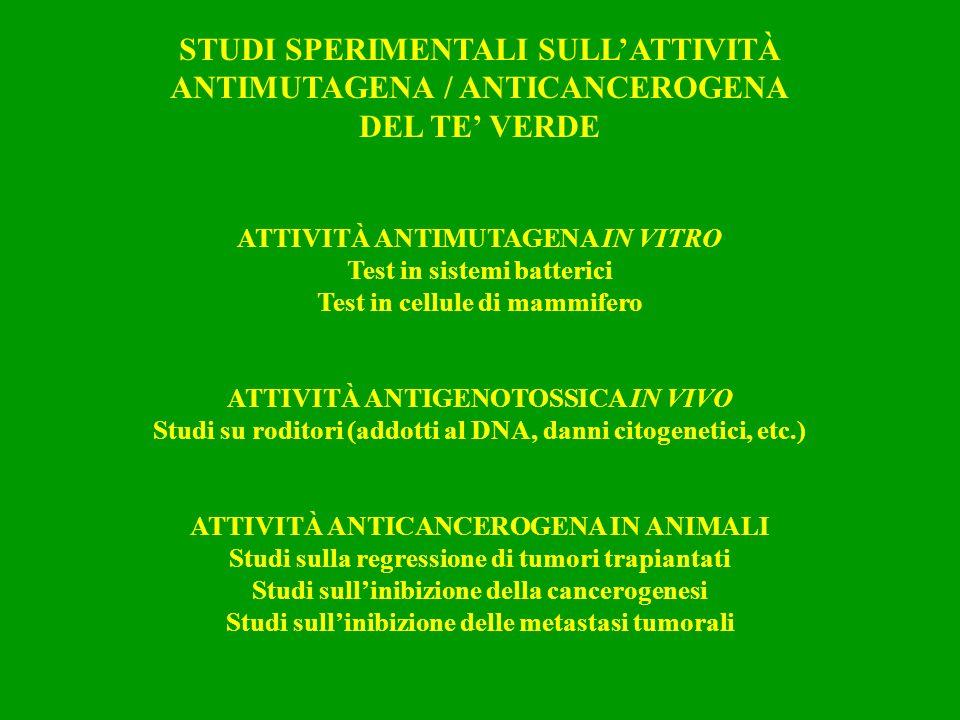STUDI SPERIMENTALI SULL'ATTIVITÀ ANTIMUTAGENA / ANTICANCEROGENA
