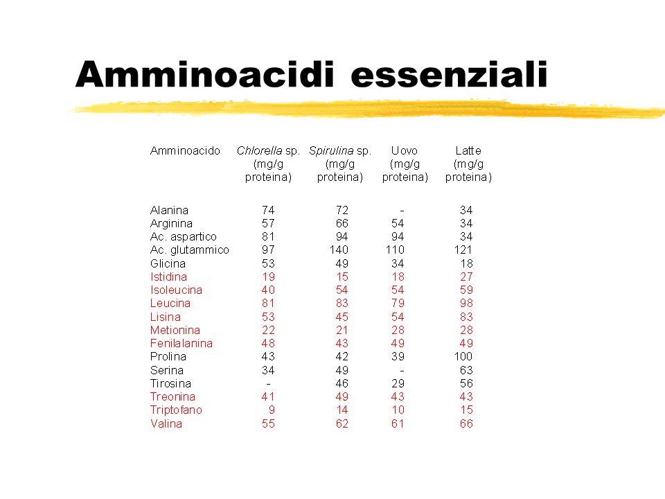 Amminoacidi essenziali