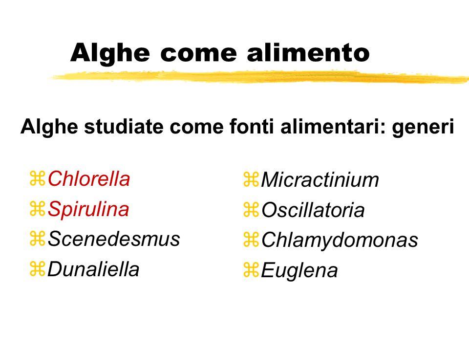 Alghe come alimento Alghe studiate come fonti alimentari: generi