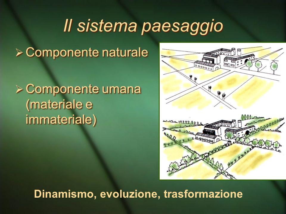 Il sistema paesaggio Componente naturale