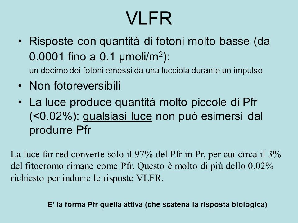 VLFR Risposte con quantità di fotoni molto basse (da 0.0001 fino a 0.1 µmoli/m2): un decimo dei fotoni emessi da una lucciola durante un impulso.