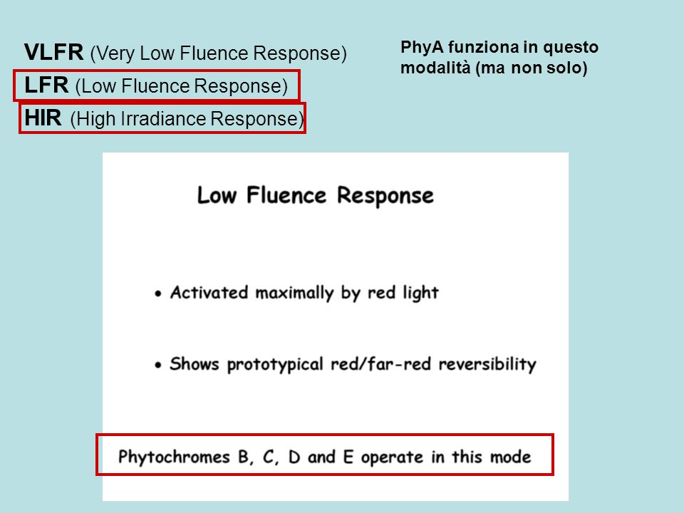 VLFR (Very Low Fluence Response) LFR (Low Fluence Response)