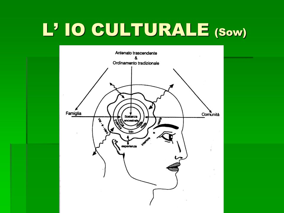 L' IO CULTURALE (Sow)