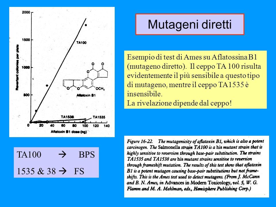 Mutageni diretti TA100  BPS 1535 & 38  FS