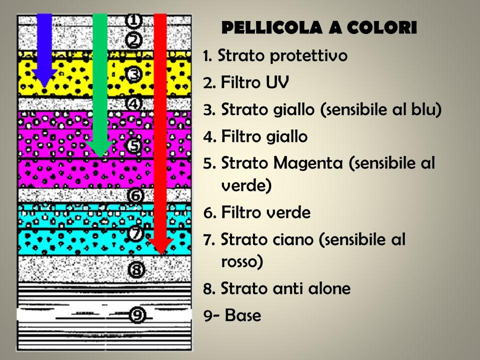 PELLICOLA A COLORI 1. Strato protettivo 2. Filtro UV 3