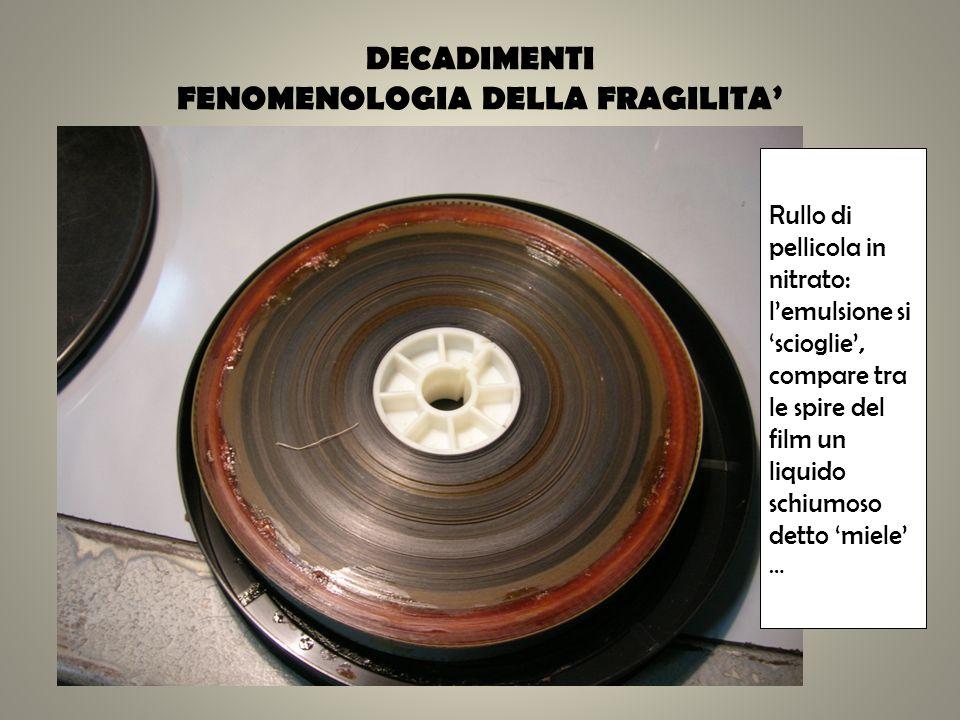 DECADIMENTI FENOMENOLOGIA DELLA FRAGILITA'
