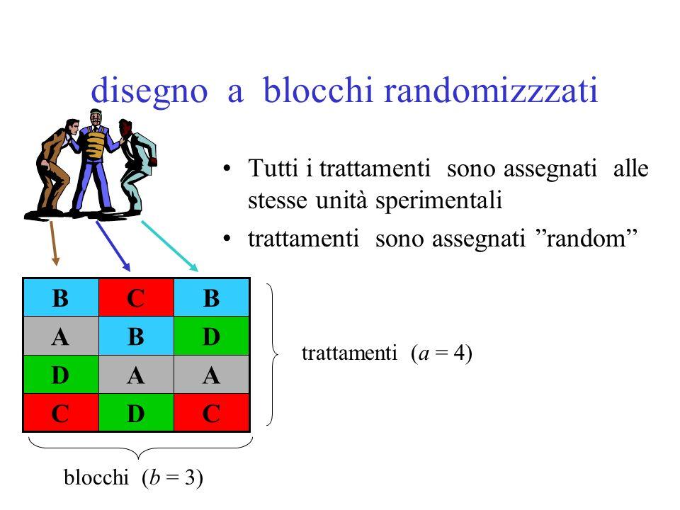 disegno a blocchi randomizzzati