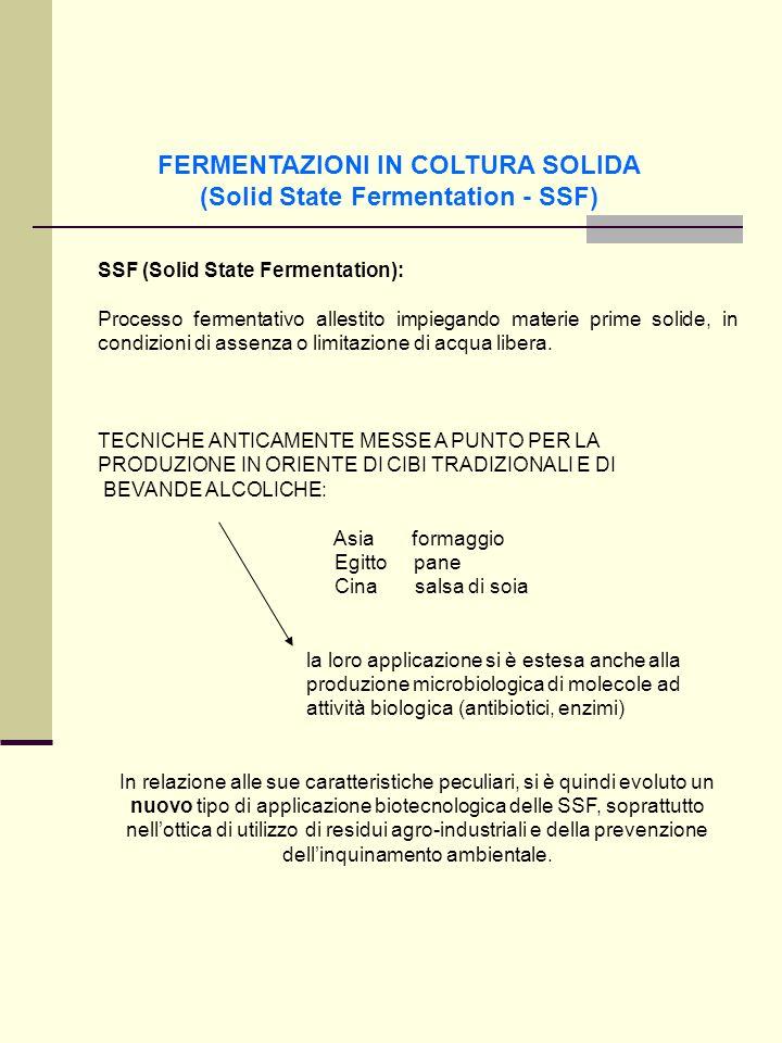 FERMENTAZIONI IN COLTURA SOLIDA (Solid State Fermentation - SSF)