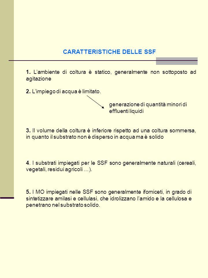 CARATTERISTICHE DELLE SSF