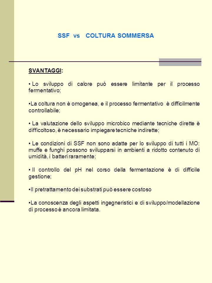 SSF vs COLTURA SOMMERSA