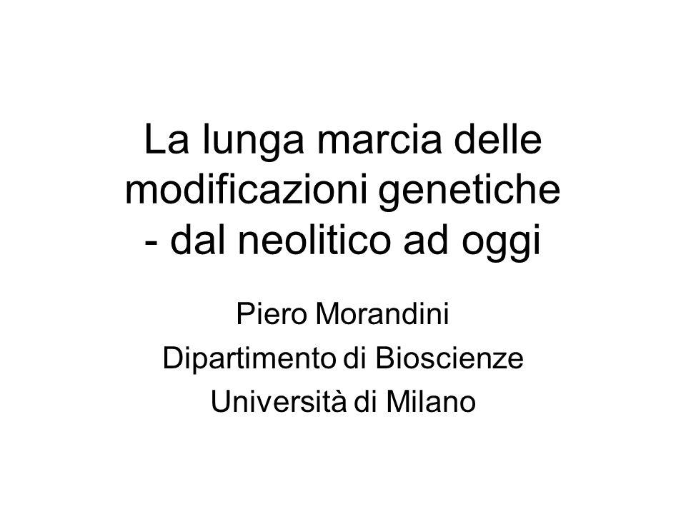 La lunga marcia delle modificazioni genetiche - dal neolitico ad oggi