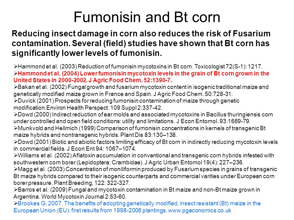 Fumonisin and Bt corn
