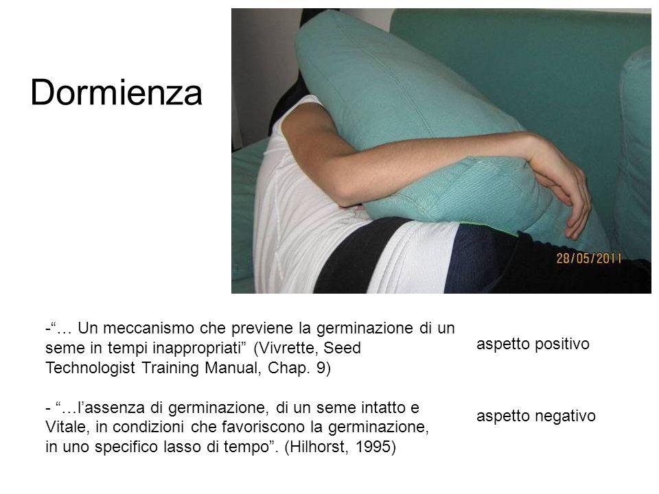 Dormienza - … Un meccanismo che previene la germinazione di un