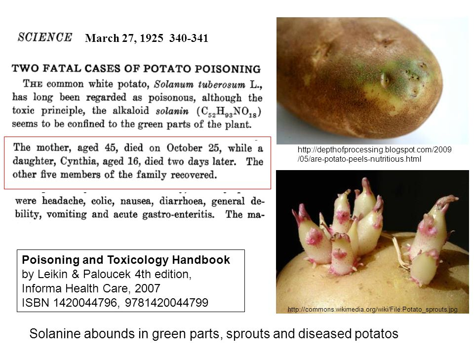 Solanine abounds in green parts, sprouts and diseased potatos