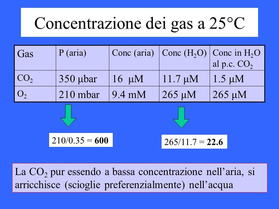 Concentrazione dei gas a 25°C