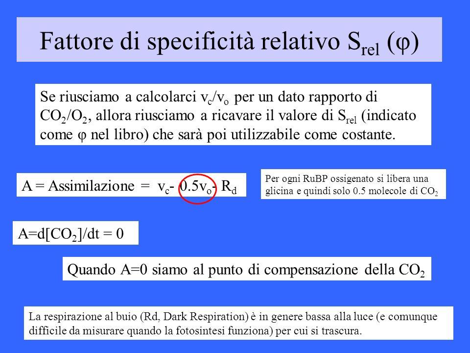 Fattore di specificità relativo Srel (φ)