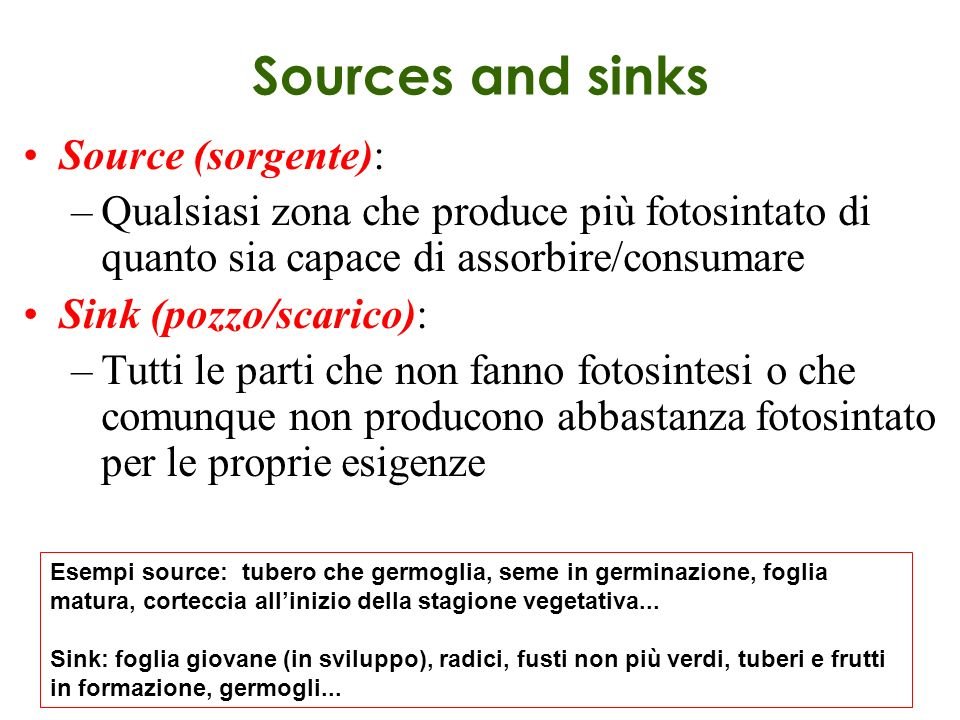 Sources and sinks Source (sorgente):