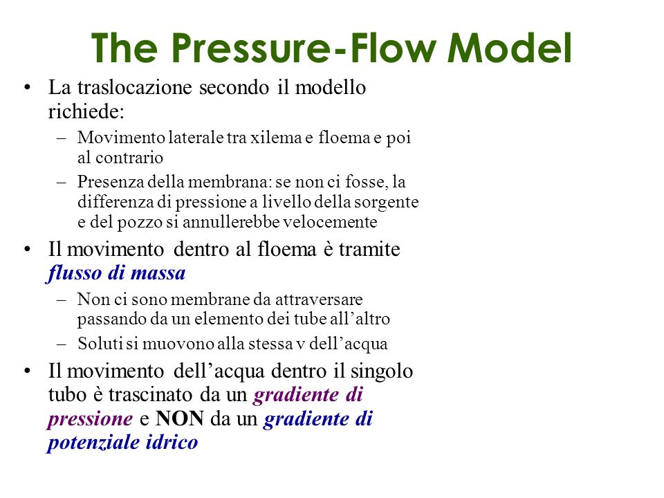 The Pressure-Flow Model