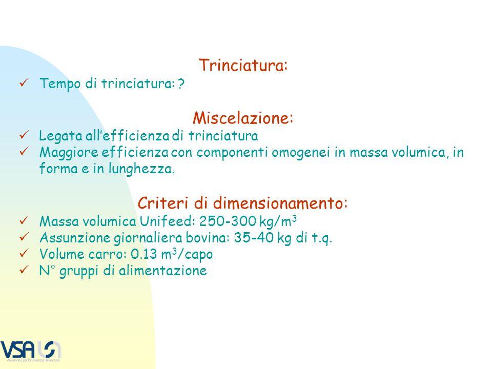 Criteri di dimensionamento: