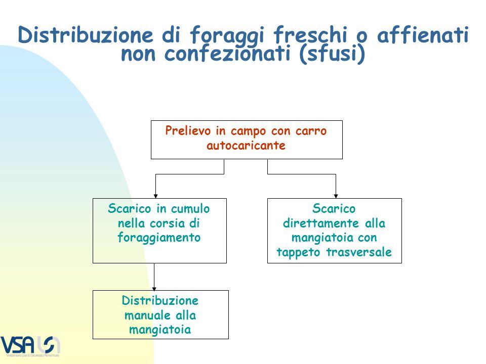 Distribuzione di foraggi freschi o affienati non confezionati (sfusi)
