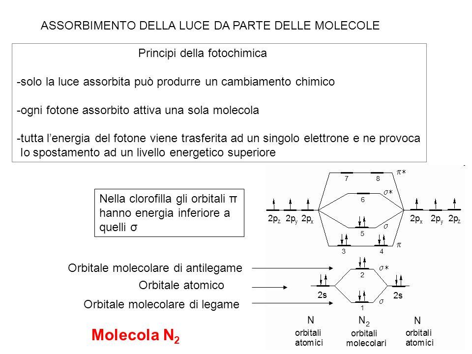 Molecola N2 ASSORBIMENTO DELLA LUCE DA PARTE DELLE MOLECOLE