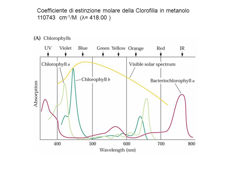 Coefficiente di estinzione molare della Clorofilla in metanolo