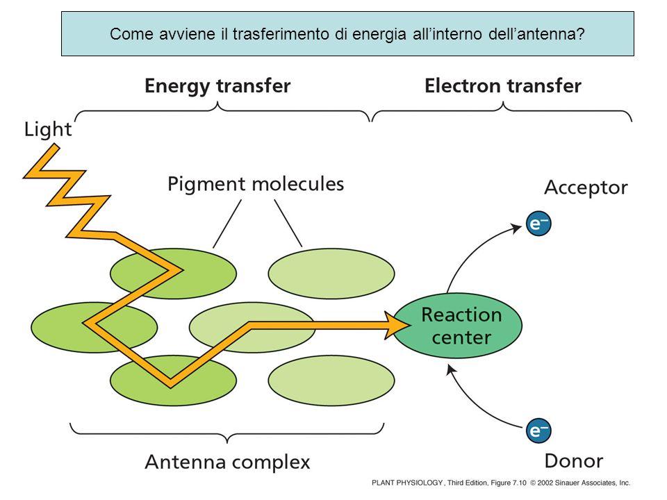 Come avviene il trasferimento di energia all'interno dell'antenna