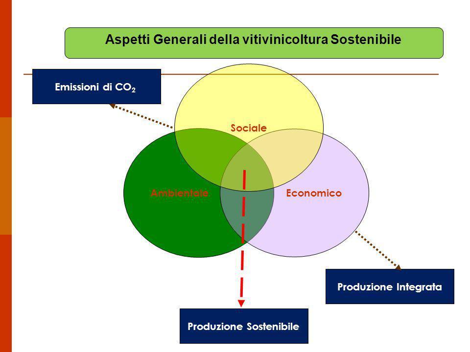 Aspetti Generali della vitivinicoltura Sostenibile