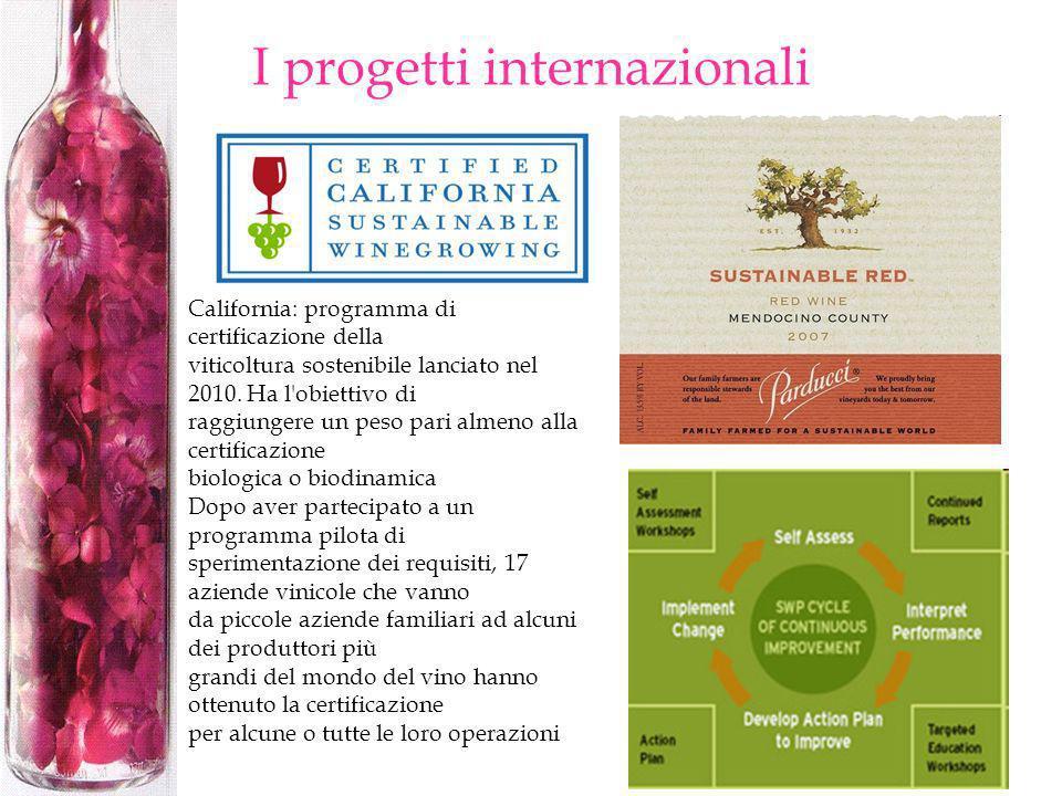 I progetti internazionali