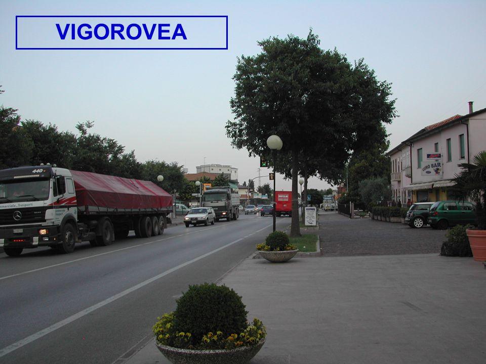VIGOROVEA