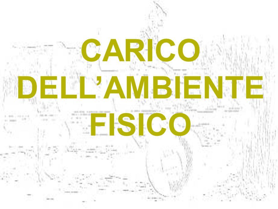 CARICO DELL'AMBIENTE FISICO