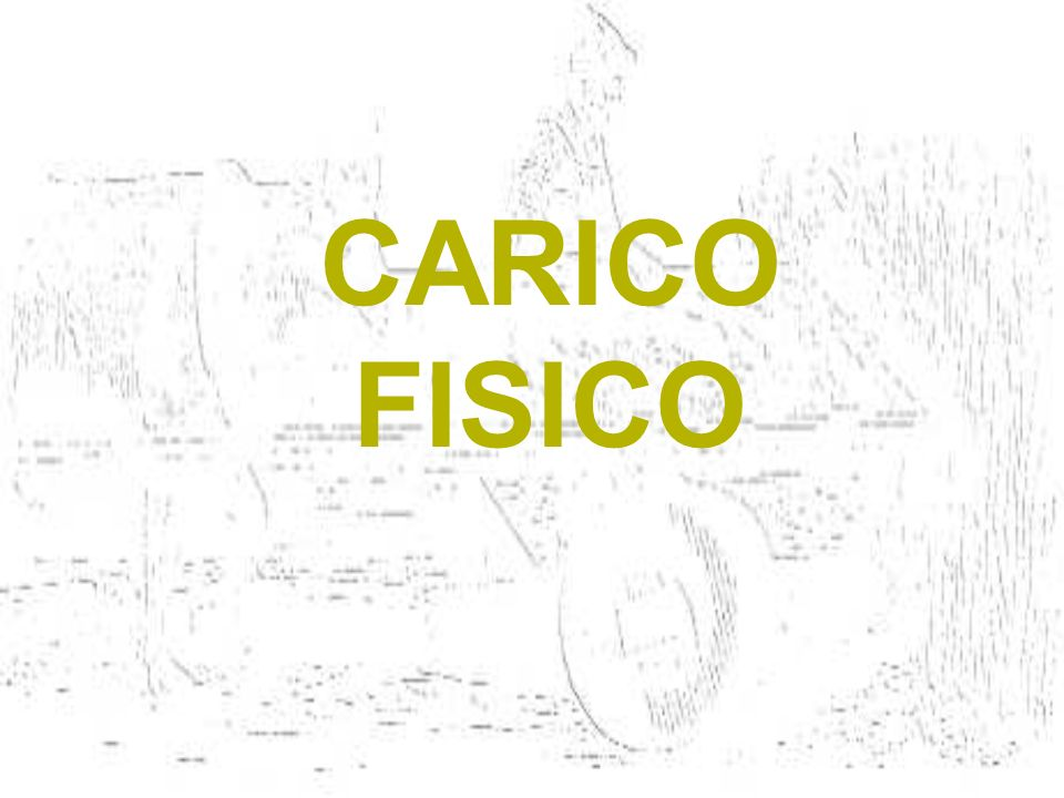 CARICO FISICO