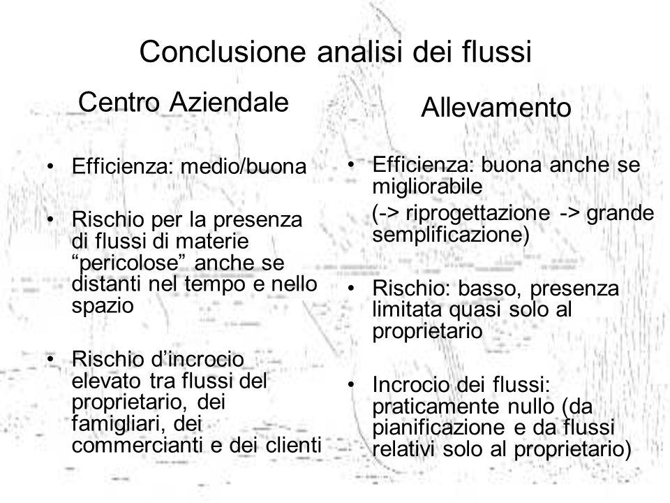 Conclusione analisi dei flussi