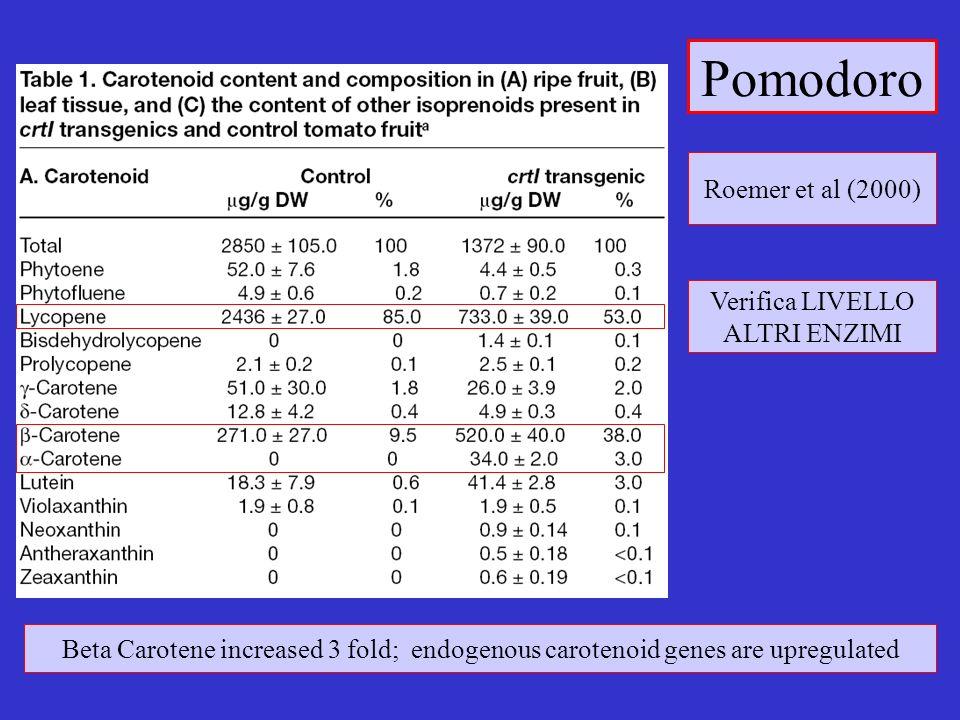 Pomodoro Roemer et al (2000) Verifica LIVELLO ALTRI ENZIMI