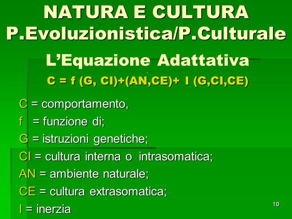 L'Equazione Adattativa . C = f (G, CI)+(AN,CE)+ I (G,CI,CE)