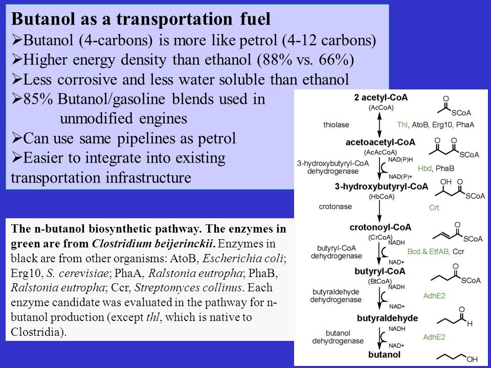 Butanol as a transportation fuel