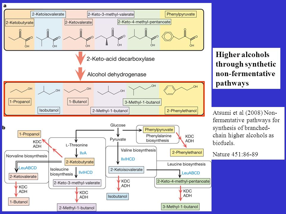 Higher alcohols through synthetic non-fermentative pathways