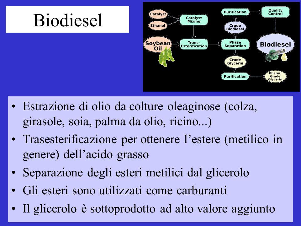 Biodiesel Estrazione di olio da colture oleaginose (colza, girasole, soia, palma da olio, ricino...)