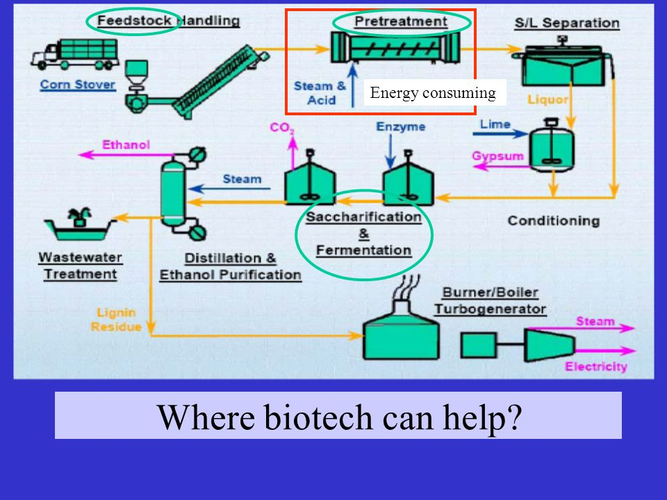 Energy consuming Where biotech can help