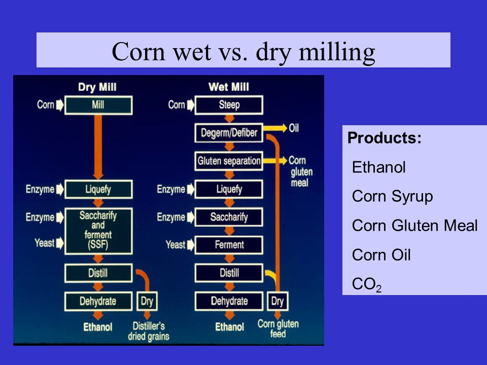 Corn wet vs. dry milling Products: Ethanol Corn Syrup Corn Gluten Meal