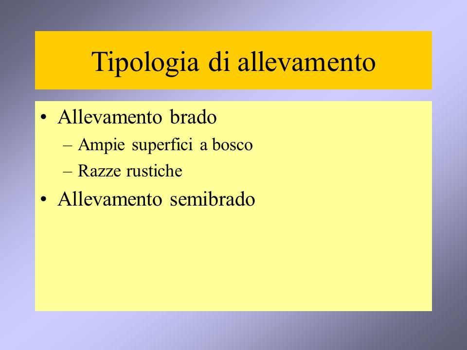 Tipologia di allevamento