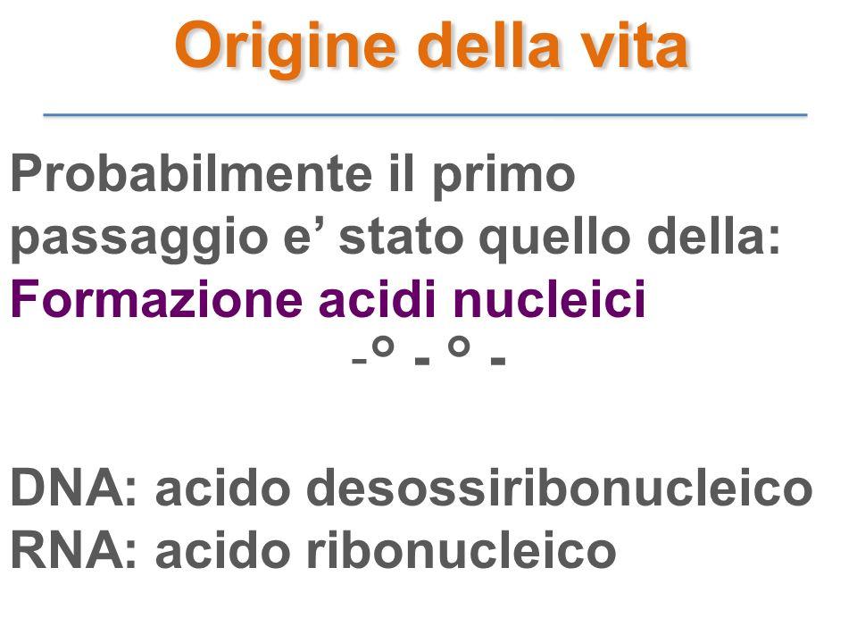 Origine della vita Probabilmente il primo passaggio e' stato quello della: Formazione acidi nucleici.
