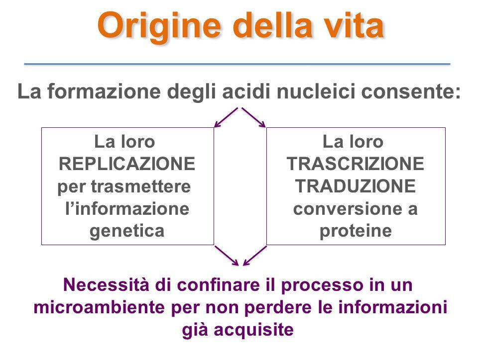 Origine della vita La formazione degli acidi nucleici consente: