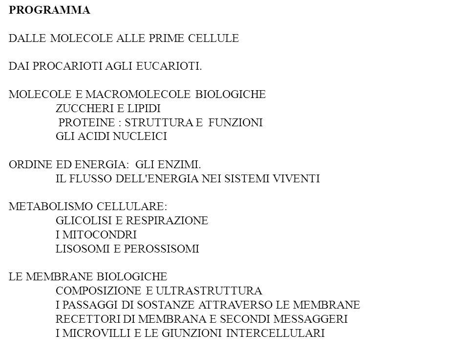 PROGRAMMA DALLE MOLECOLE ALLE PRIME CELLULE. DAI PROCARIOTI AGLI EUCARIOTI. MOLECOLE E MACROMOLECOLE BIOLOGICHE.