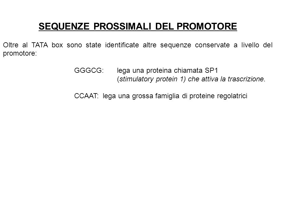 SEQUENZE PROSSIMALI DEL PROMOTORE